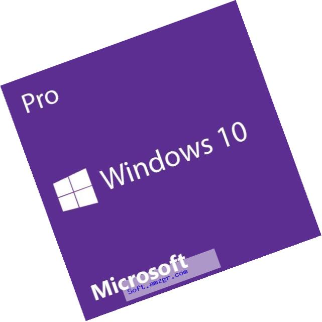 Microsoft Windows 10 Pro 32 Bit System Builder OEM | PC Disc